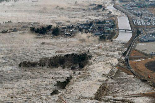 Usa: dopo tsunami del 2011 un milione di pesci asiatici sulla costa