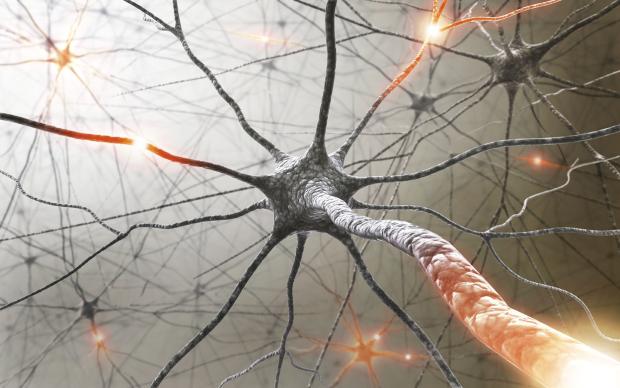 Sclerosi multipla: carenza di vitamina D aumenta le possibilità di ammalarsi