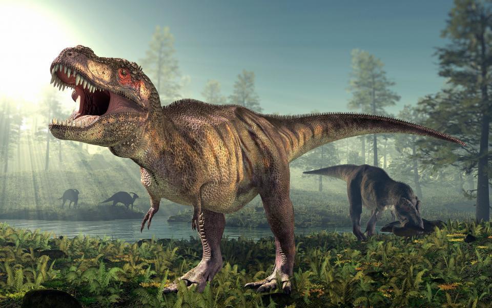 Terrificante dinosauro carnivoro scoperto in Africa, il Kayentapus ambrokholohali