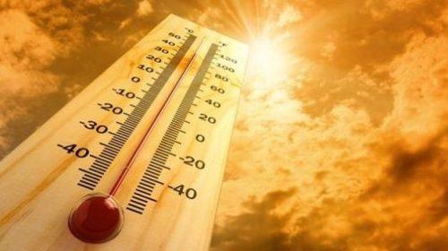 Individuata la temperatura ideale per vivere bene