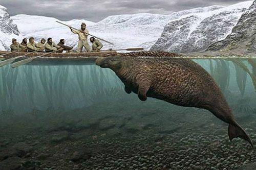 Siberia: scoperti i resti di 'Vacca di mare', un enorme animale estinto