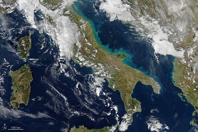 Adriatico: colossale fioritura di alghe lungo le coste italiane?