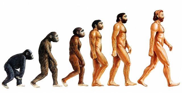 L'evoluzione essere umano potrebbe essere finita, la ricerca