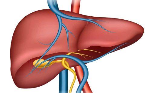 Problemi al fegato? Ecco i sintomi più comuni