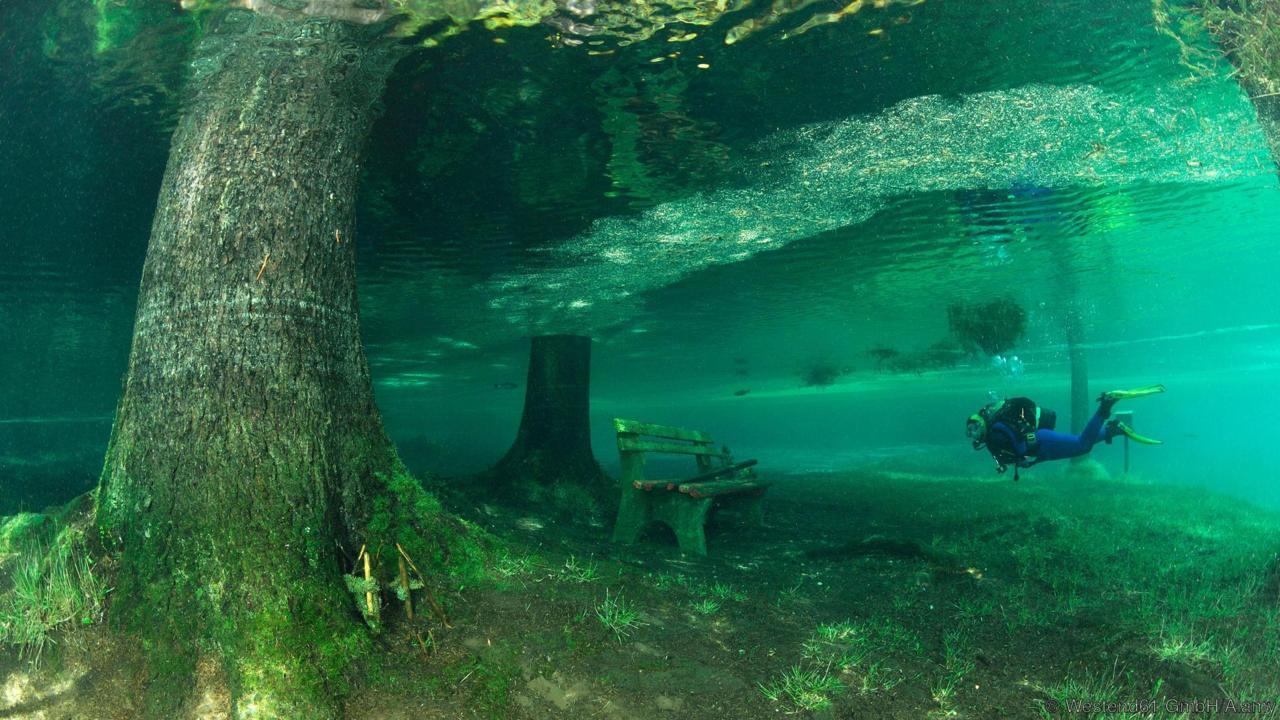 In Austria il 'lago verde', un parco coperto dall'acqua
