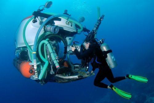 Scoperto il rifugio segreto dei pesci della barriera corallina