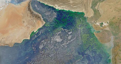 Scoperta gigantesca 'zona morta' nel Golfo dell'Oman
