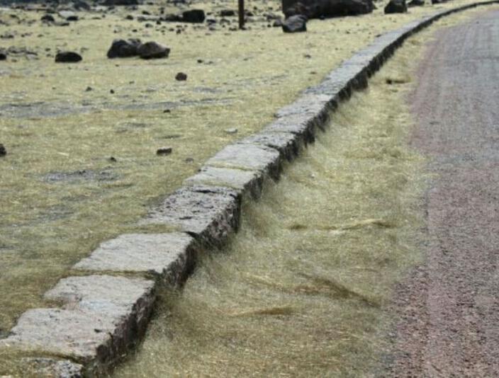 Hawaii, i Capelli di Pele, il fenomeno che accompagna l'eruzione del Kilauea