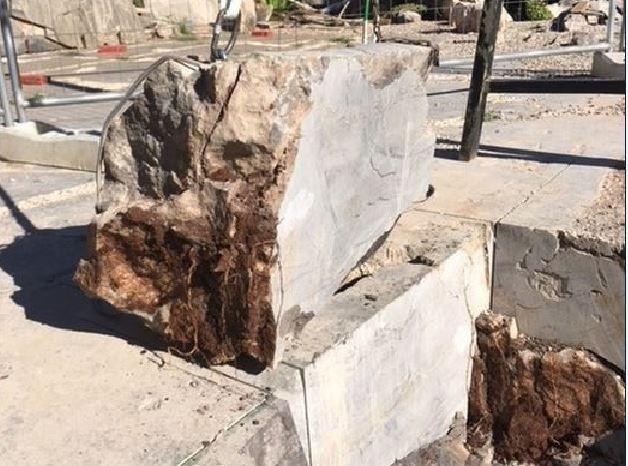 Estratto blocco di 600 kg contenente il cranio di un dinosauro