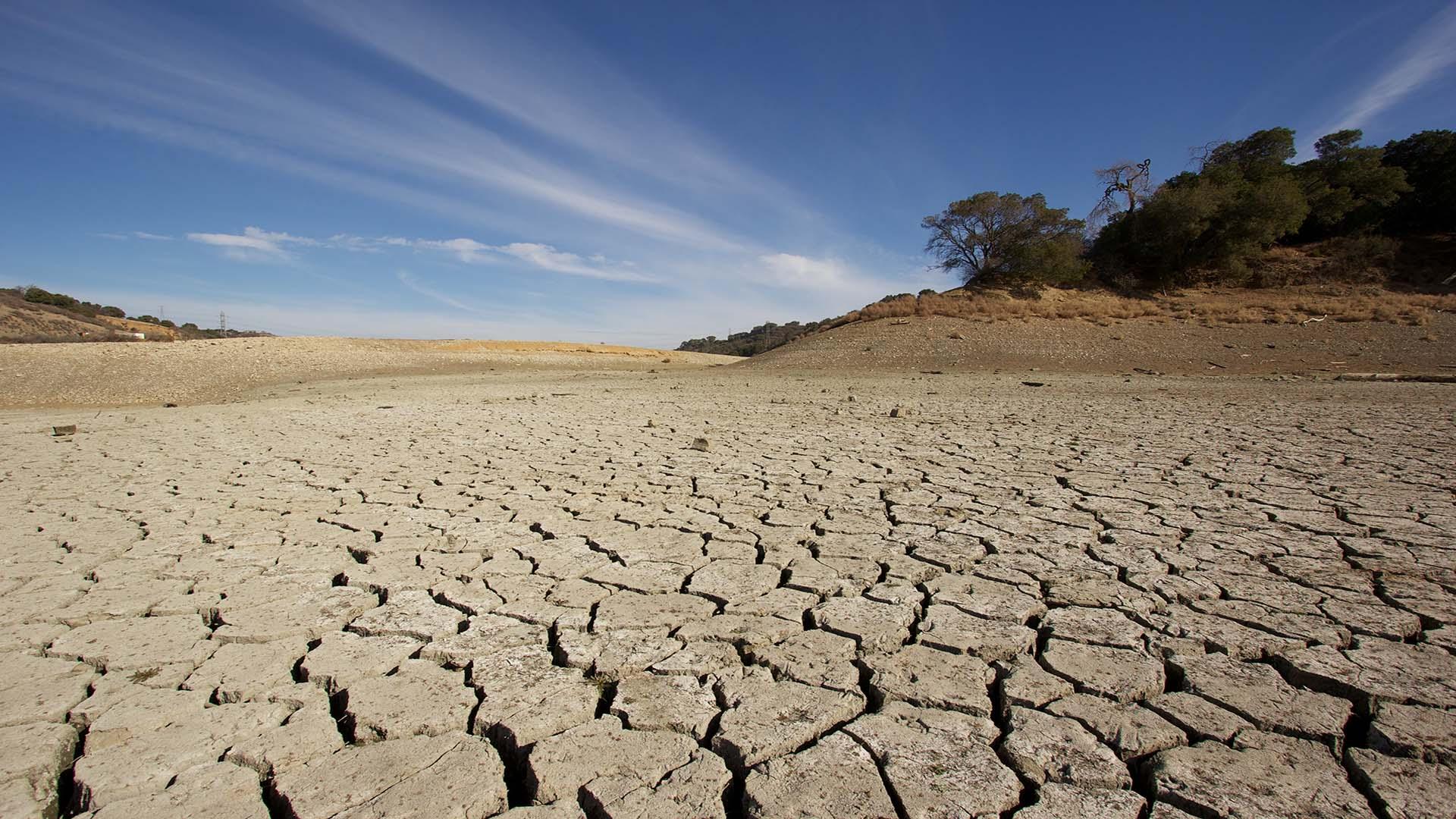 Cambiamenti climatici: nuovo record di CO2, vita sulla Terra in serio rischio