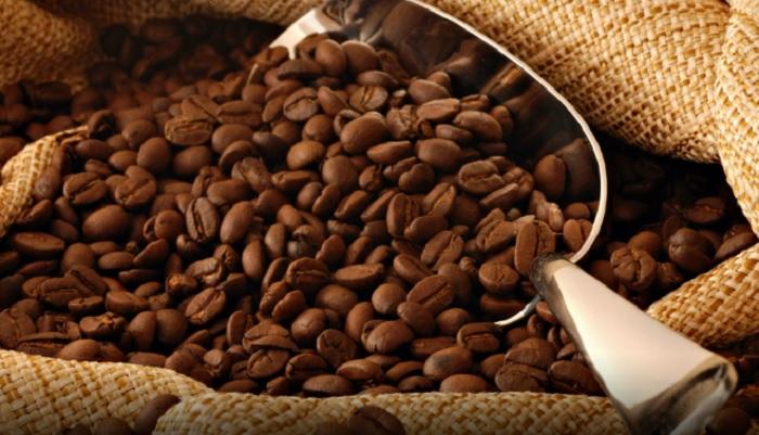 Caffè a rischio estinzione a causa di cambiamenti climatici e deforestazione