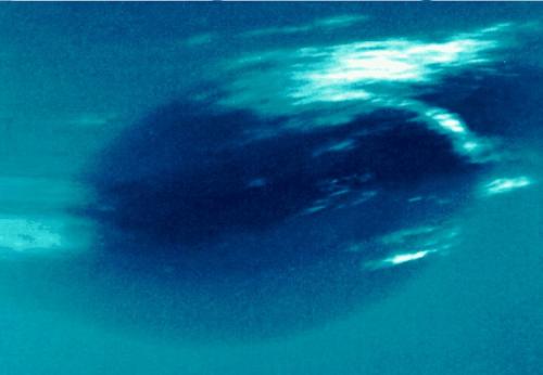 Spazio: una gigantesca macchia scura su Nettuno