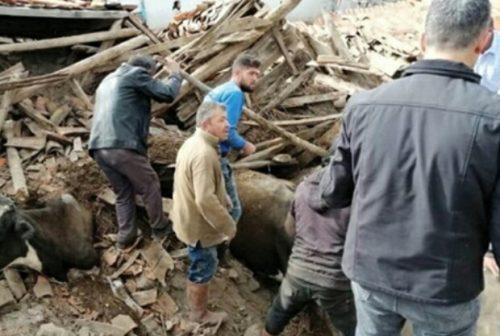 Terremoto: forte scossa in Turchia, trema anche la Francia