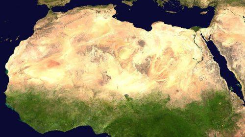 Great Green Wall:  come l'Africa potrebbe salvarsi dalla desertificazione