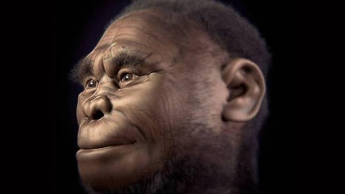 Homo luzonensis, la nuova specie scoperta nelle Filippine