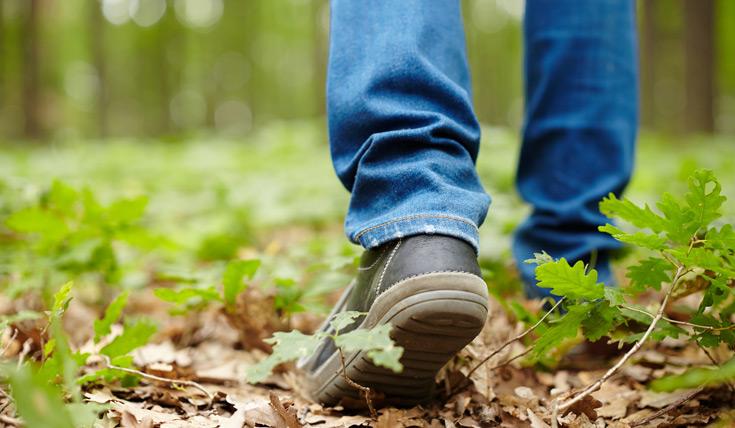 Il passo svelto aumenta l'aspettativa di vita? La ricerca