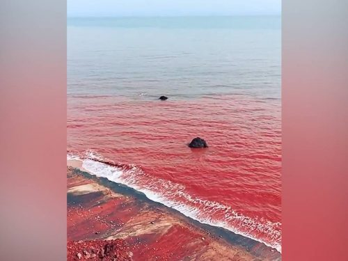 Marea di sangue a Hormuz, in Iran. Il video