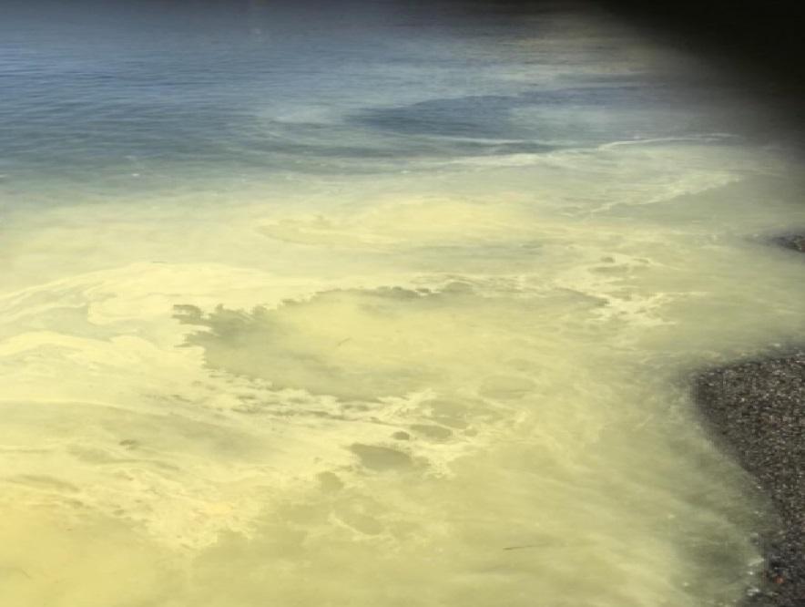 Ambiente: il Mar Ionio si 'colora' di giallo. La spiegazione degli esperti