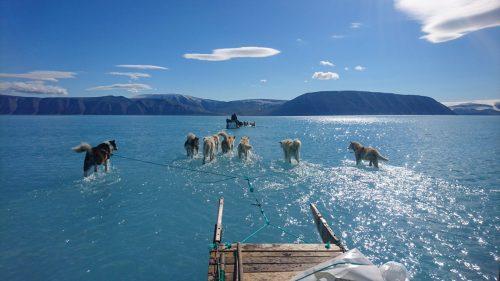 Groenlandia: le immagini shock dello scioglimento dei ghiacci