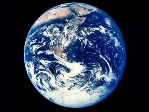Ambiente: un piccolo cambiamento della dieta può salvare il pianeta