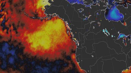 Blob nell'Oceano Pacifico: in arrivo un'altra mortale ondata di acqua calda?