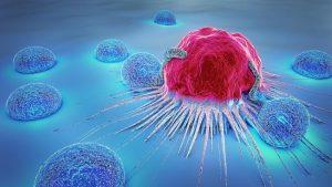 Mix di farmaci trasforma tumore in grasso. L'incredibile scoperta