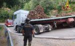 Tir perde il carico, tonnellate di legname su un'auto: morto un 15enne
