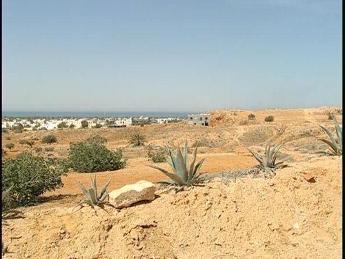 Aumento delle temperature: il Mediterraneo è una delle aree più a rischio al mondo