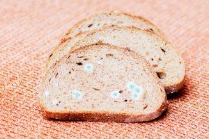 Salute: è sufficiente tagliare la parte ammuffita degli alimenti?
