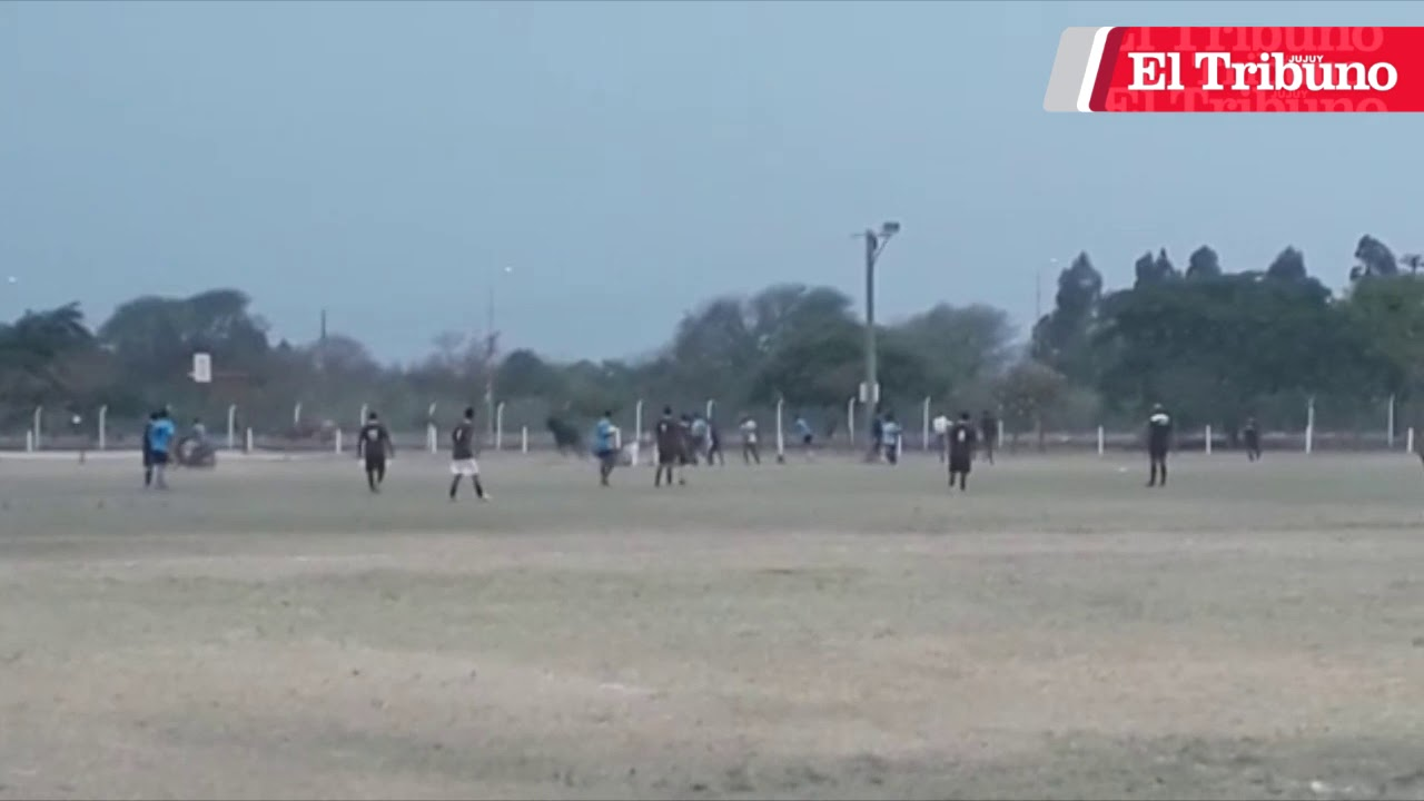 Toro infuriato irrompe in partita di calcio: terrore in Argentina. Il video