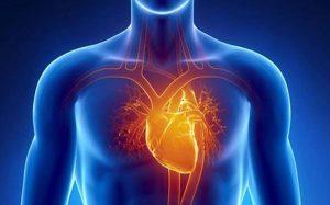 Arresto cardiaco: aumentano le probabilità di morte nel weekend
