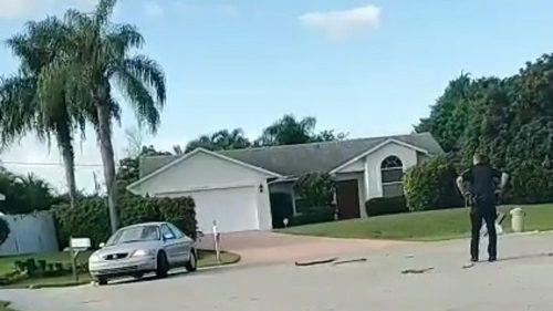 Florida: cane al volante, auto in retromarcia per un'ora. Il video