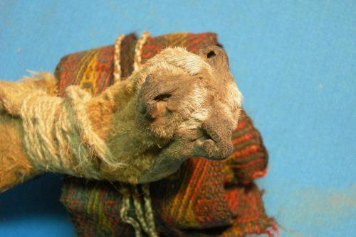 Bolivia: un mix di droghe in una borsa di oltre mille anni fa