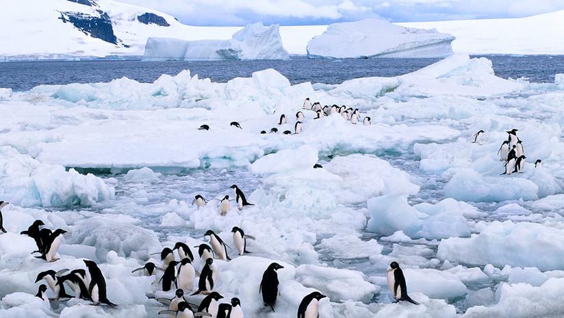 Ambiente: il livello degli oceani è già salito 3 metri al secolo. L'allarme