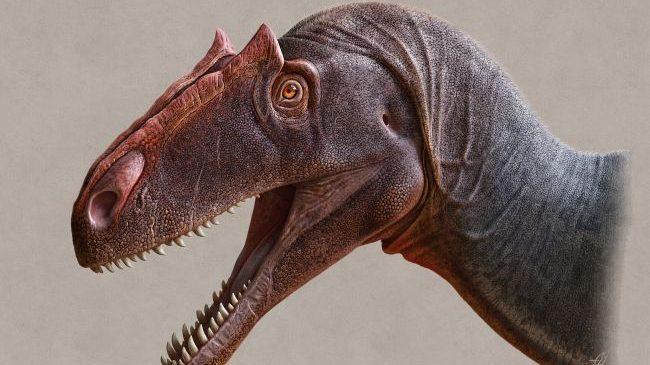 Il teschio radioattivo di un dinosauro scoperto in Utah
