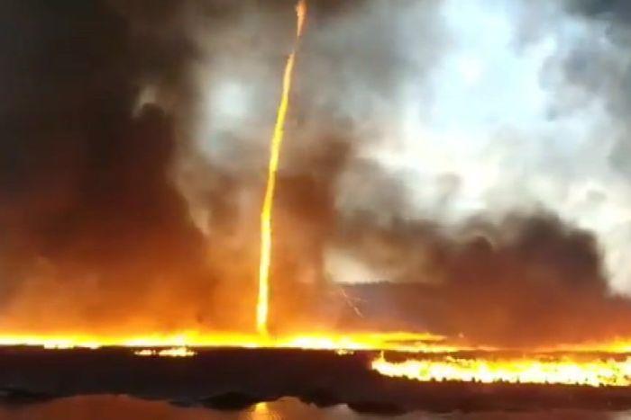 Australia: un tornado di fuoco devasta l'Isola dei Canguri