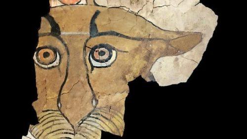 Egitto: scoperti gli occhi di un leopardo