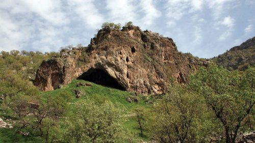 Fiori accanto ad uno scheletro di Neanderthal: la scoperta in Iraq