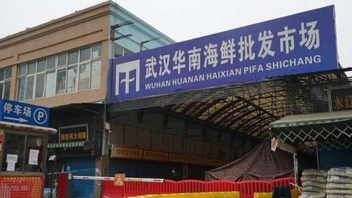 Wuhan: scoperta famiglia 'nascosta' nel mercato ittico
