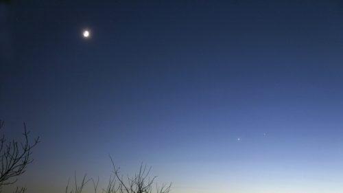 Venere raggiunge la massima luminosità