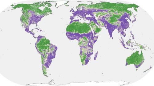 La metà della superficie terrestre è ancora incontaminata. Lo studio