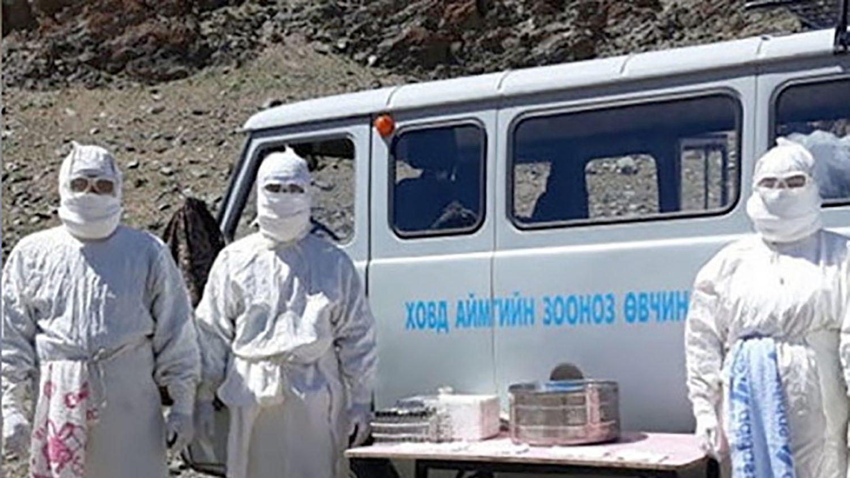 Mongolia: due casi di peste nera. Intere province in quarantena