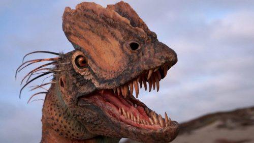 Dilophosaurus wetherilli: scoperti i resti del dinosauro che sputava veleno