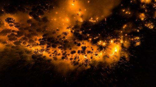 Incendi in Siberia fuori controllo: 'Solo il 5% raggiunto dai Vigili del Fuoco'