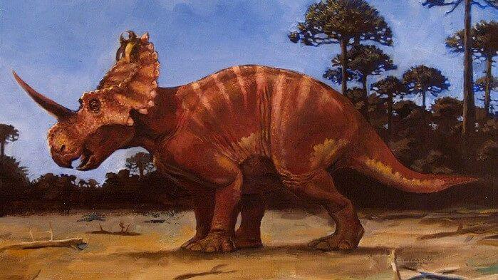 Paleontologia: scoperto il primo caso di tumore nei fossili di un dinosauro
