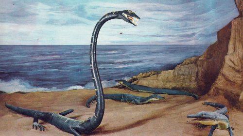 Tanystropheus: risolto il mistero del rettile con il collo lunghissimo