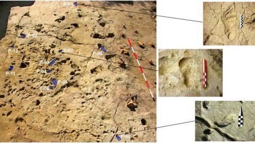 Scoperte le più antiche impronte di bambini. Risalgono a 1,2 milioni di anni fa