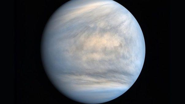 Segnali di vita su Venere: in atmosfera sostanza prodotta da microbi. L'annuncio clamoroso