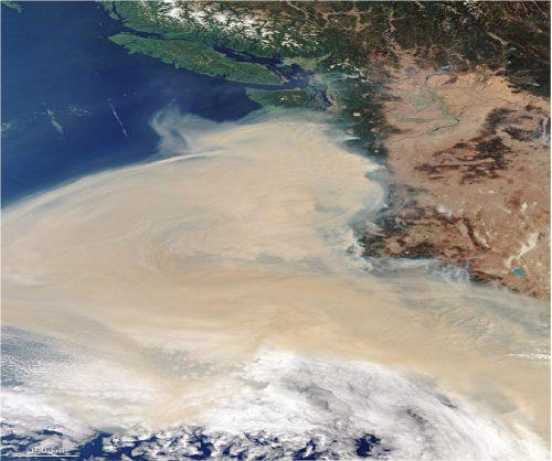 Brucia la West Coast americana, almeno dieci vittime
