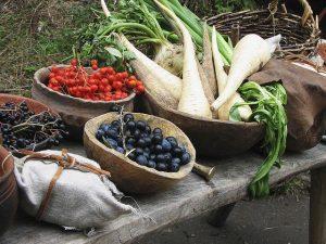 Quali alimenti consumavano nell'Età del Bronzo? Lo studio